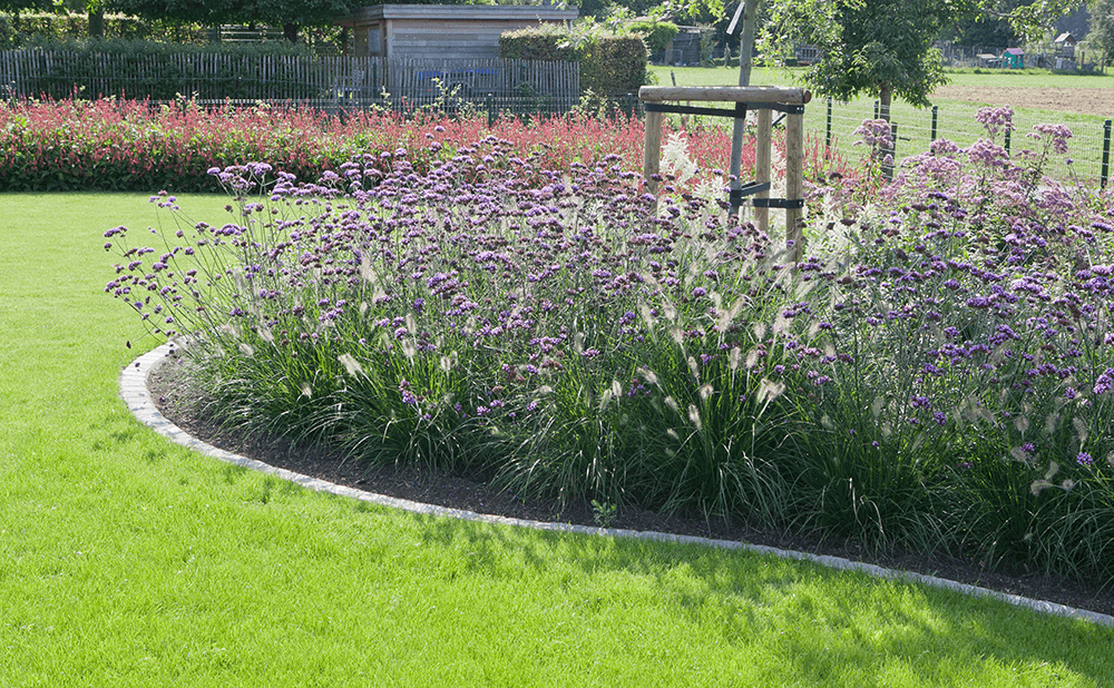 Casteele Tuinen - tuin, groenwerken, verharding, terras, pad, planten, beplanting, bloemen, snoeien, onderhoud - Totaalproject in Verrieststraat Deerlijk 2